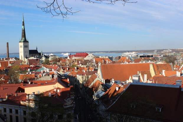 Расширение посольства США в Таллине вызвало негодование местных жителей