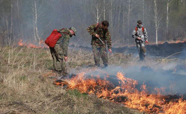 Добровольцев для борьбы с природными пожарами набирают в регионе