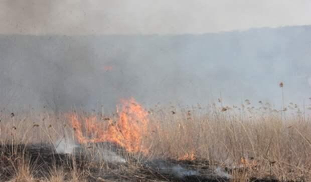 Экстренное предупреждение попожарам снова объявлено вНижнем Тагиле