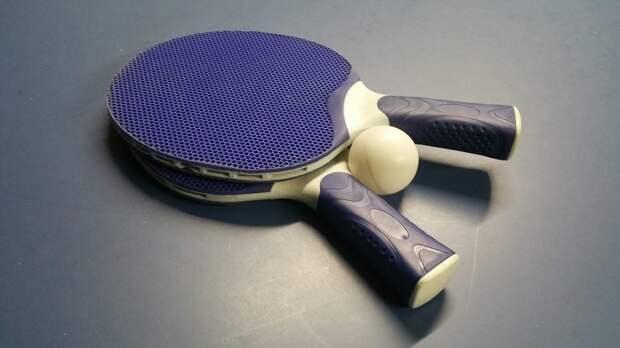 Настольный теннис. Фото: pixabay.com