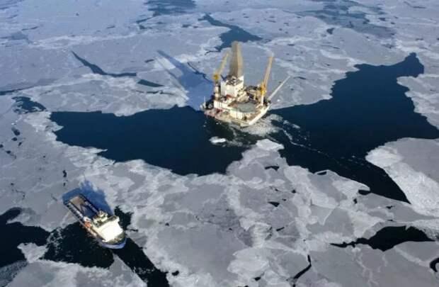 Добыча Арктика
