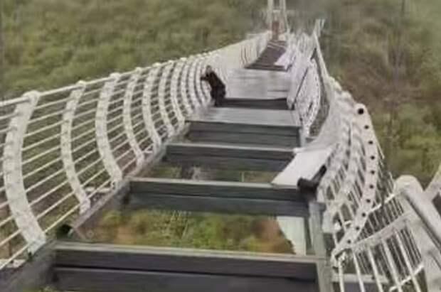Над бездной: турист застрял на разрушившемся стеклянном мосту (ФОТО)