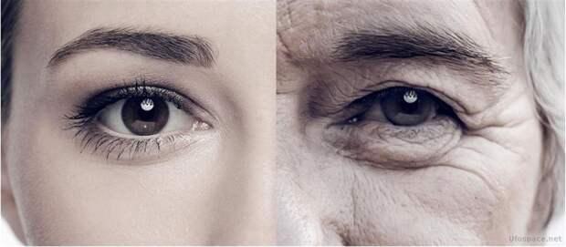 Правда ли, что старение – это болезнь, которую можно вылечить?