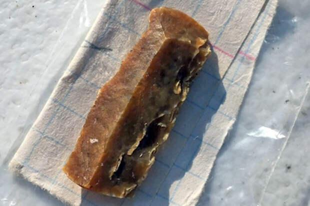 Под Омском найдены артефакты возрастом в 12 тысяч лет