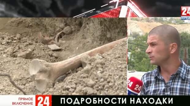 Массовое захоронение человеческих останков в Феодосии. Новые подробности
