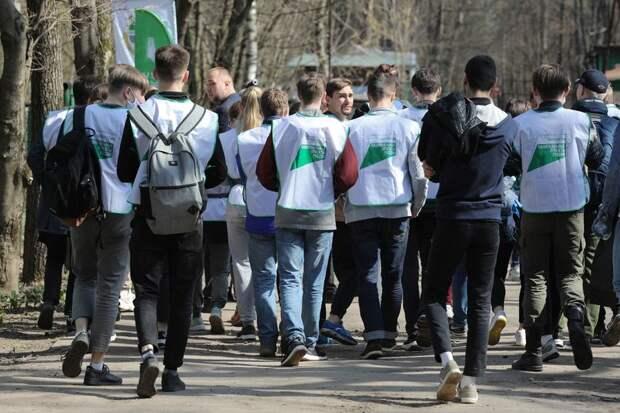 Начать с чистого леса: общественники и студенты Тимирязевской академии начали весеннюю «ГЕНуборку»