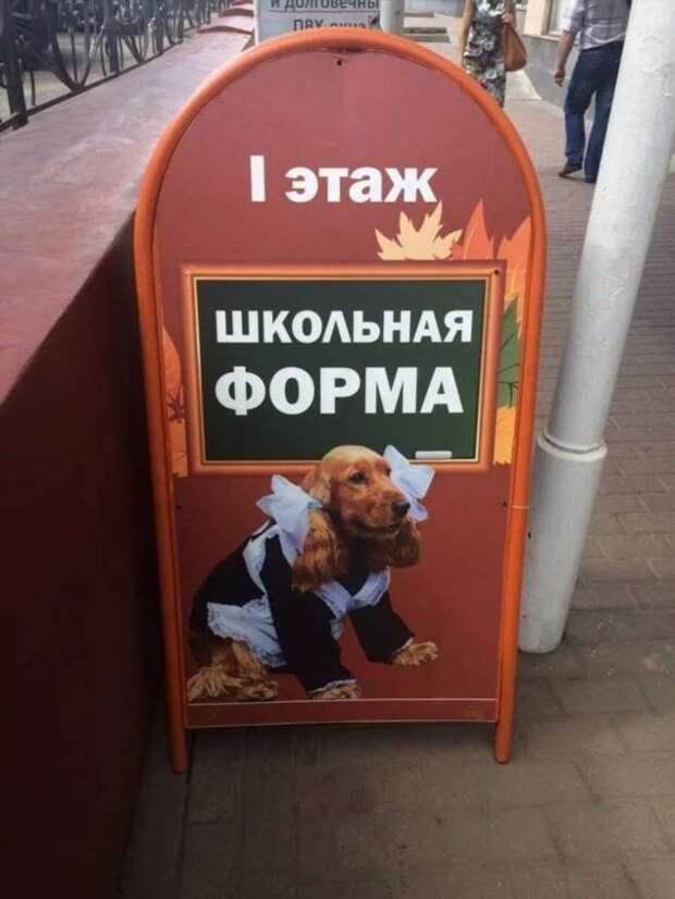 Прикольные вывески. Подборка №chert-poberi-vv-11511211092020