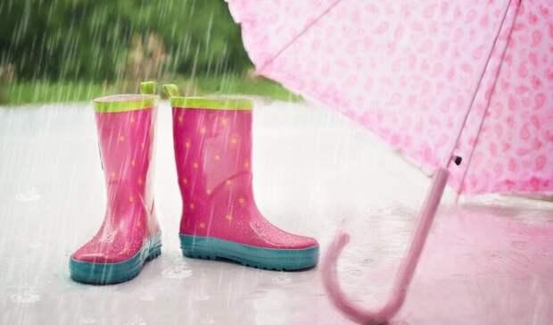 Дождливую ижаркую погоду пообещали жителям Ростова-на-Дону