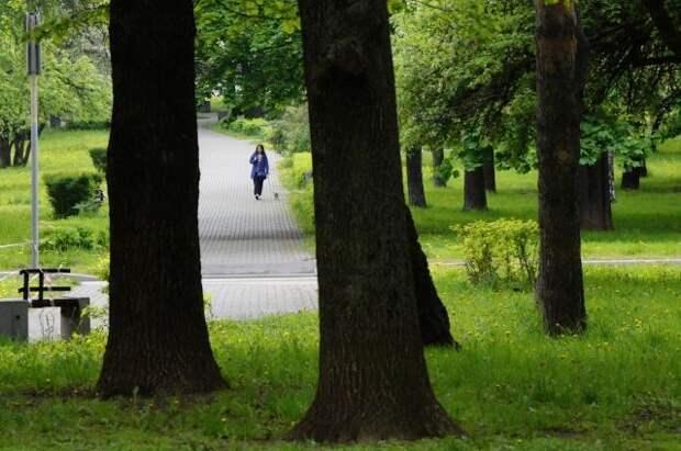 Святенко: Сохранение природных зон имеет высокую социальную значимость