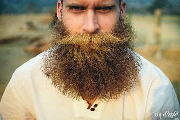 Интересные факты о бороде и усах: Борода у славян