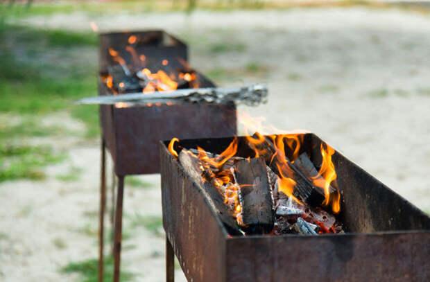 Выбор шашлычника: 5 главных качеств мангала