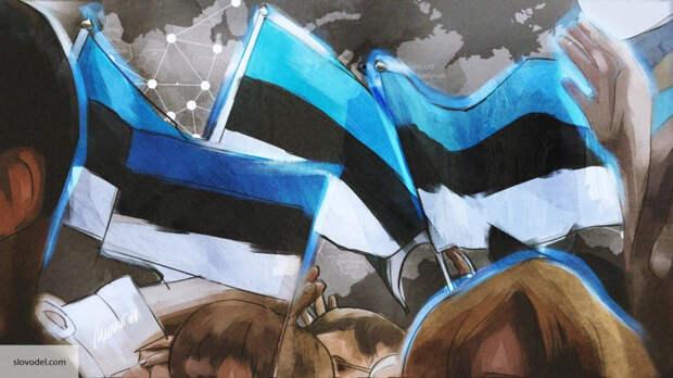 Спор с претензией: почему Эстония продолжает мечтать о российских территориях