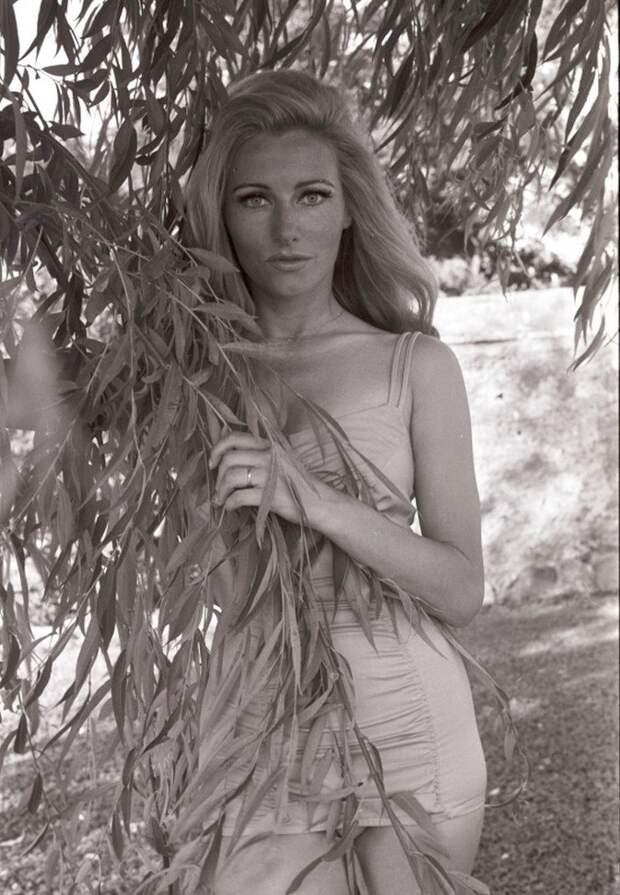 Красотка из 60-ых Эльга Андерсен