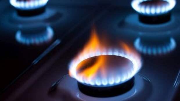 """В """"Газпроме"""" пообещали бесплатно газифицировать небольшие дома"""