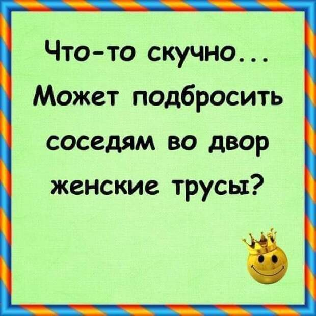 - Вовочка, твое сочинение про кошку дословно совпадает с сочинением твоего брата...