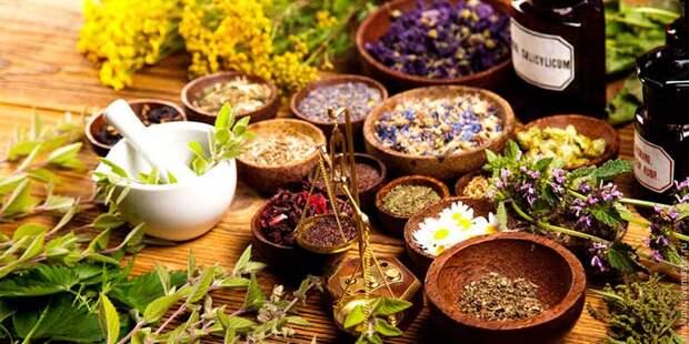 Лечение весеннего недомогания лекарственными растениями