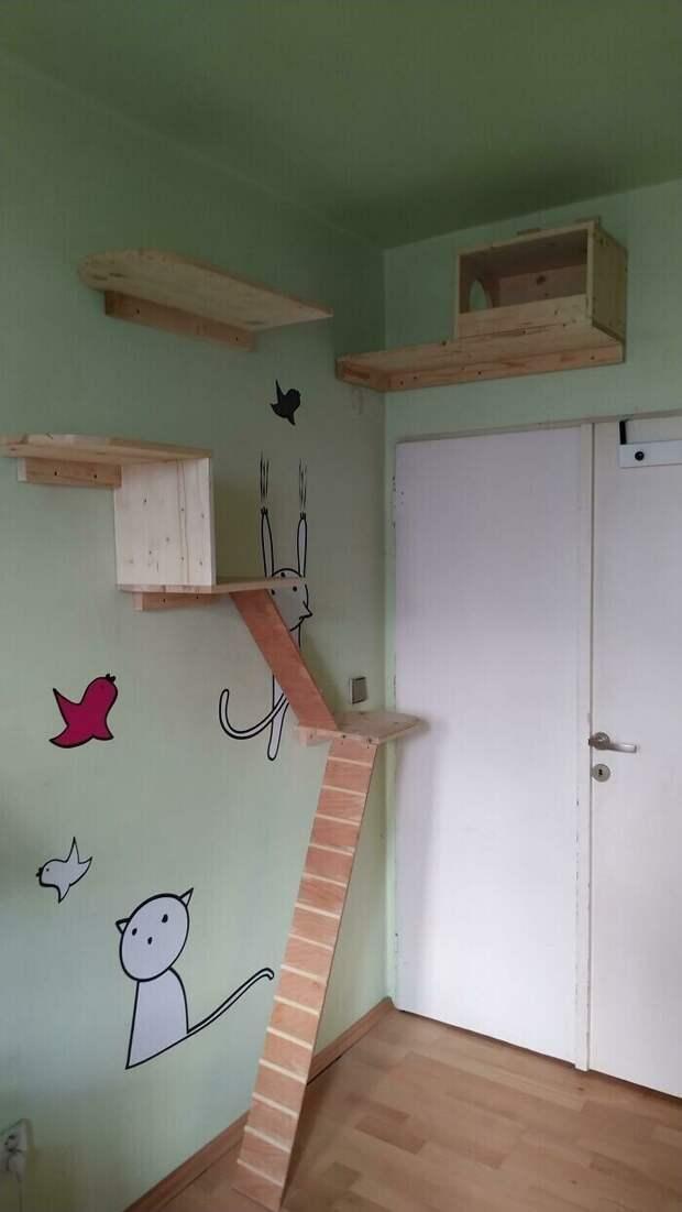 """6. """"Я построил дом для своей кошки, и очень горжусь этим. Я впервые делаю что-то подобное, потому что мне всего 14 лет"""""""