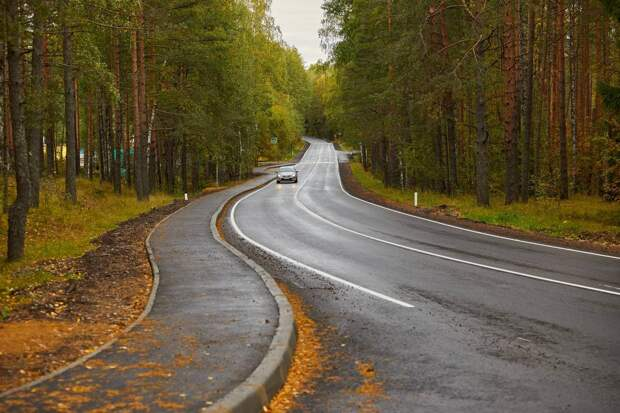 Золотая осень наступила, бегом в парк. В Петербурге тихо и сухо