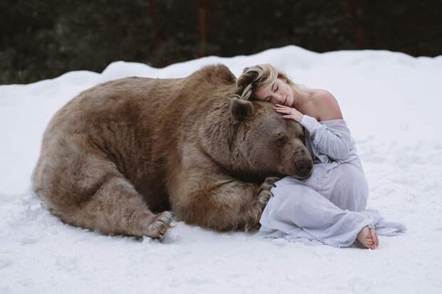Фотограф Ольга Баранцева. Фотосессии с дикими животными и творческие портреты 14