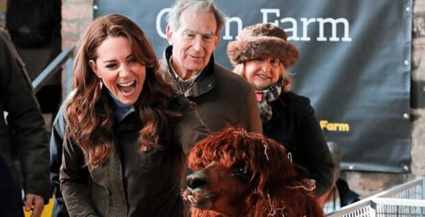 Герцогиня Кэтрин удивила поклонников фотографиями с фермы
