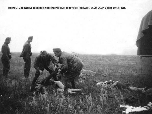 """""""Защити память героев"""" фашистской Венгрии"""