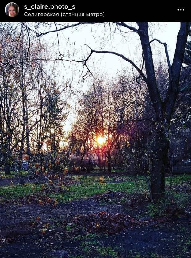 Фото дня: закат на «Селигерской»