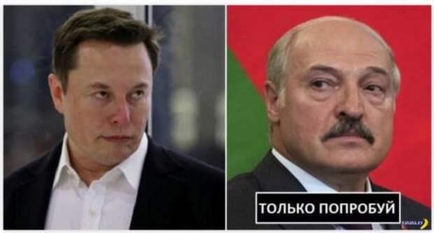 Илон Маск поможет белорусам?