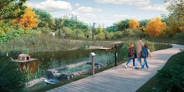 Экомаршрут и смотровые площадки: как обустроят пойму реки Чермянки