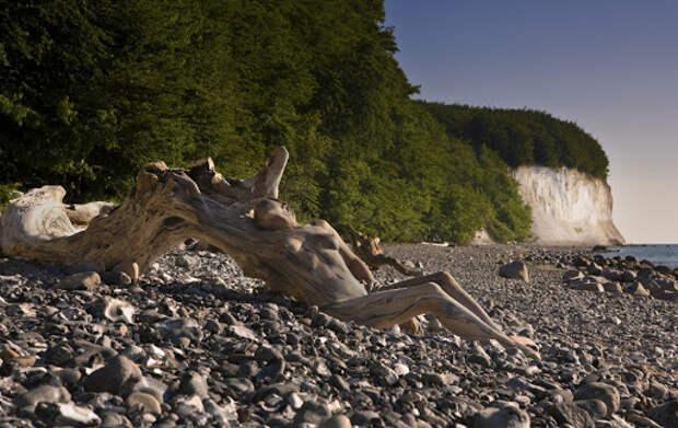 Фотограф прячет насвоих пейзажных работах обнаженных моделей. Сможете ихнайти?