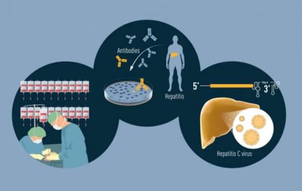 Нобелевская премия по медицине присуждена за открытие вируса гепатита С