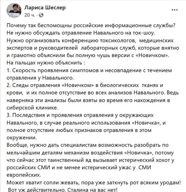 Шеслер предложила, как избавиться от абсурда в «деле Навального»