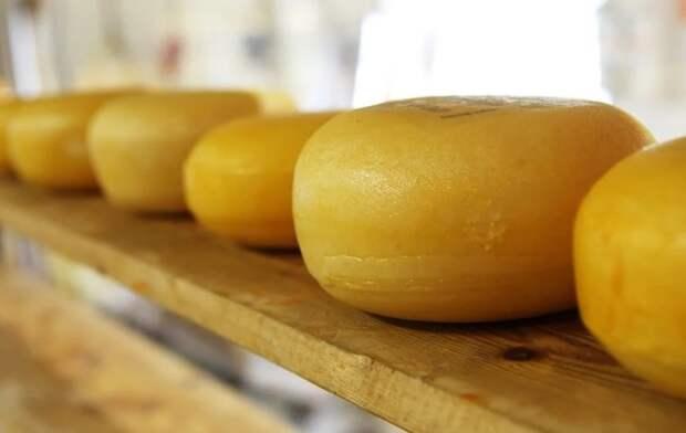Медики рассказали, какой сыр противопоказан при гипертонии