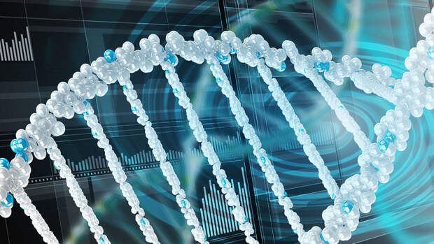 Российские ученые представили крупнейший каталог нуклеотидных замен в генах человека