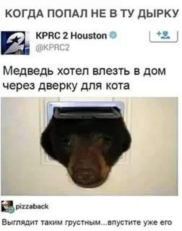 Смешные комментарии. Подборка chert-poberi-kom-chert-poberi-kom-34160412112020-7 картинка chert-poberi-kom-34160412112020-7