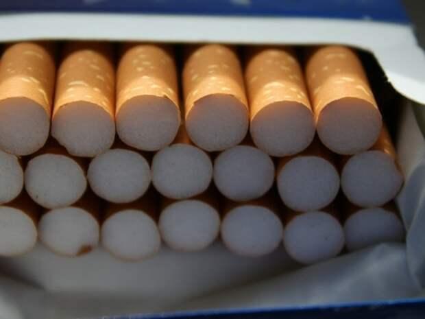 Склад с контрафактными сигаретами на 96млн рублей обнаружили под Москвой