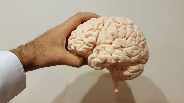 Установлено влияние диабета I типа на кровоснабжение головного мозга