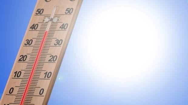 Солнечная и сухая погода установится в Центральной России в июле