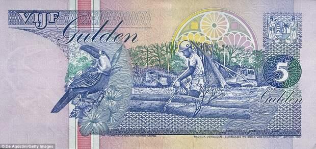 5 суринамских гульденов