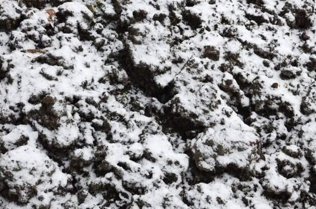 Замерзшая земля в огороде