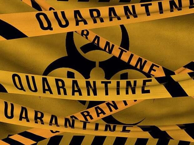 В Австрии начали смягчать коронавирусные ограничения