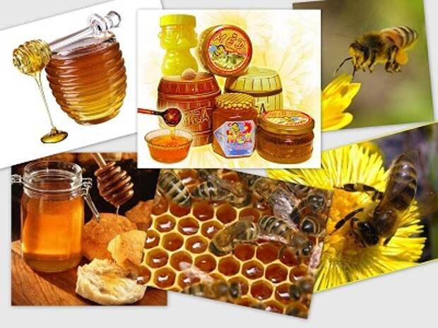 Лечение пчелами, медом и травами...