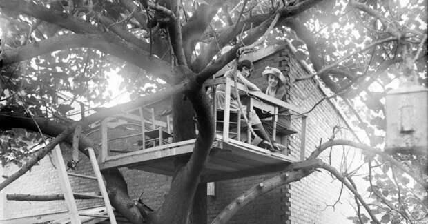 Главное не упасть: 5 фото бара на дереве времен сухого закона в США