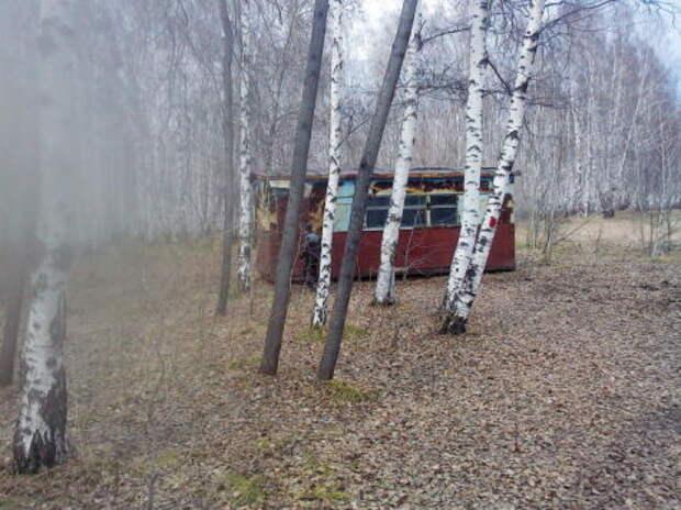 На лыжах за уходящим поездом