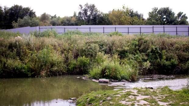 Ростовский эколог рассказал подробности сброса сточных вод в реку Темерник