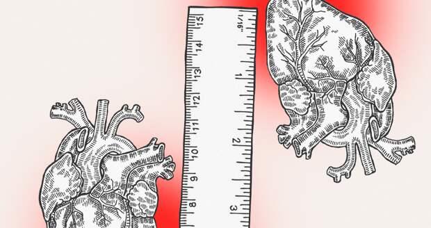 Мифы о высоком давлении, которые могут стоить тебе жизни