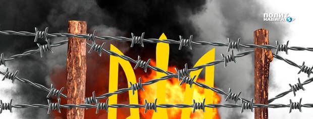 «Разруха, произвол и неонацисты». В США подготовили шокирующий ролик про Украину