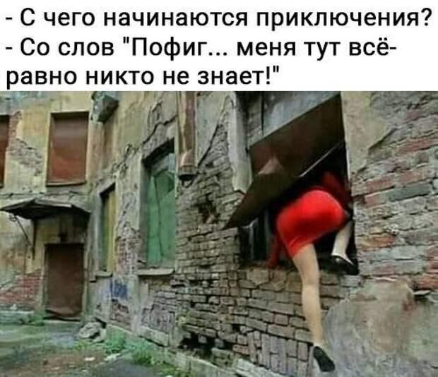 - Я свою меру знаю: упал, значит хватит!...
