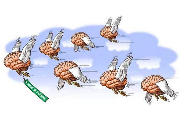Годовщина «интеллектуального сопротивления». ТНУ в Киеве постиг полный провал