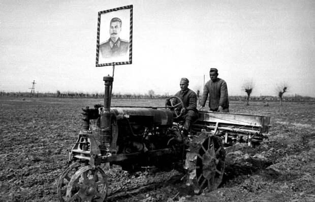 Кто на самом деле устроил в СССР голод 30-х годов?
