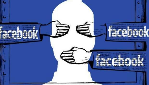 Габрелянов: государство должно закрыть Facebook на территории РФ и создать свой ресурс